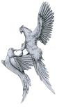 pheasants-24-xx-w900-h900
