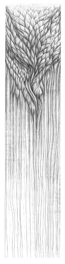 wall-scroll-1-w900-h900