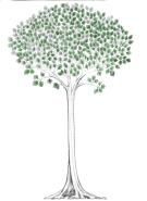 Tree 4 XX